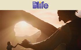 毎月更新★Dlife「一杯からはじまるストーリー」ダイジェスト版